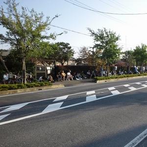 吉川ムサシノ幼稚園 運動会